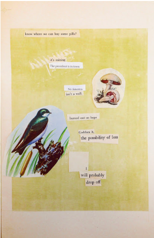 collage poem front cover